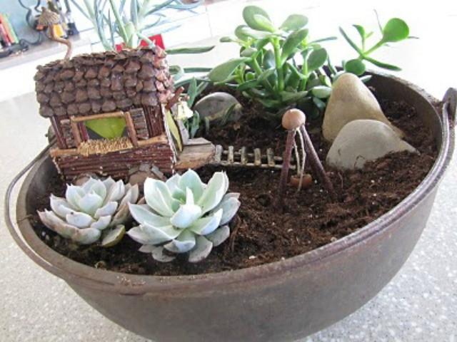 Fairy Garden di piante grasse