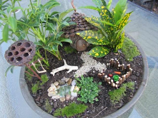 Fairy Garden con l'orto