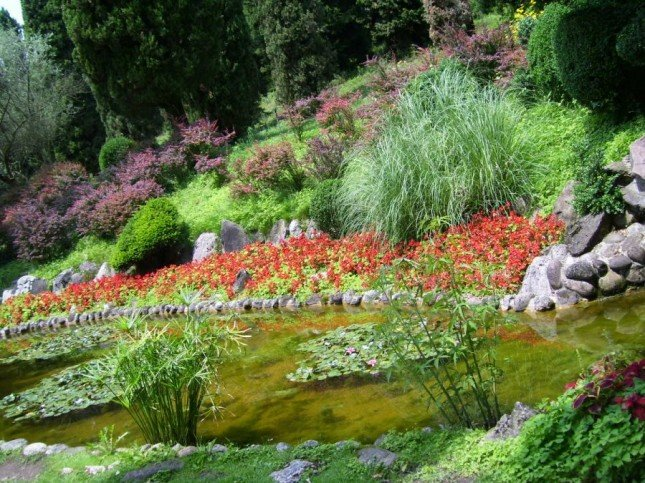 Giardini Acquatici