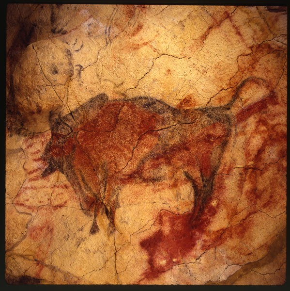I disegni preistorici delle Grotte di Altamira (© photo: Grotte di Altamira).