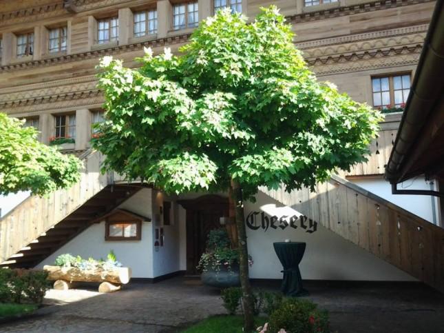 Chesery, un locale tipico dove degustare i formaggi locali a Gstaad