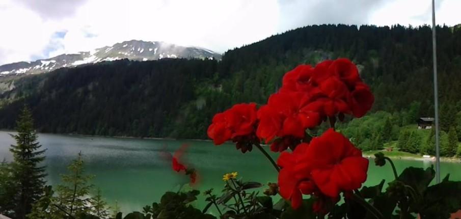 Lao di Arnen, un piccolo paradiso nel cuore delle Alpi bernesi