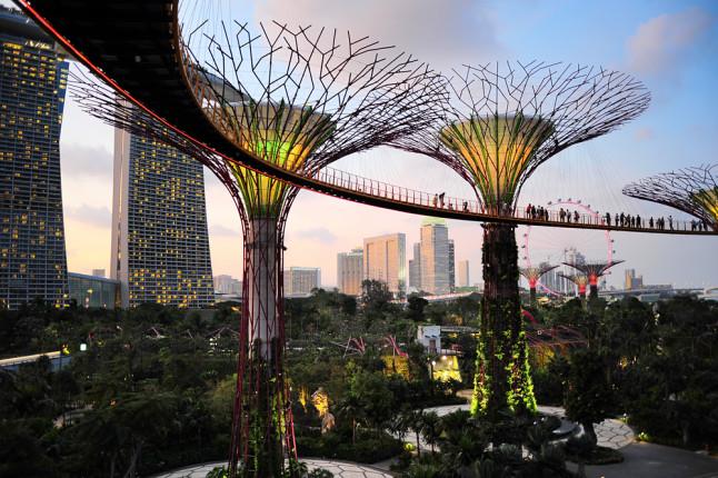 Gardens by the Bay, i giardini sulla baia di Singapore