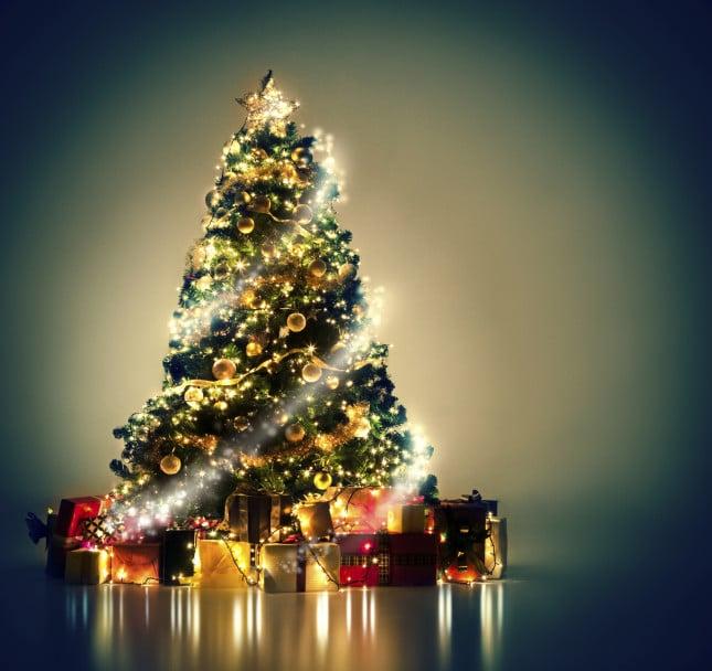 Che magia l'albero di Natale!