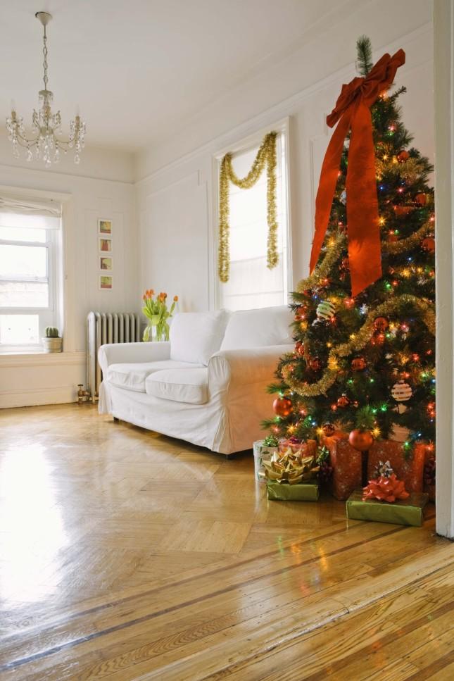 scegliere un albero di dimensioni adeguate alla stanza