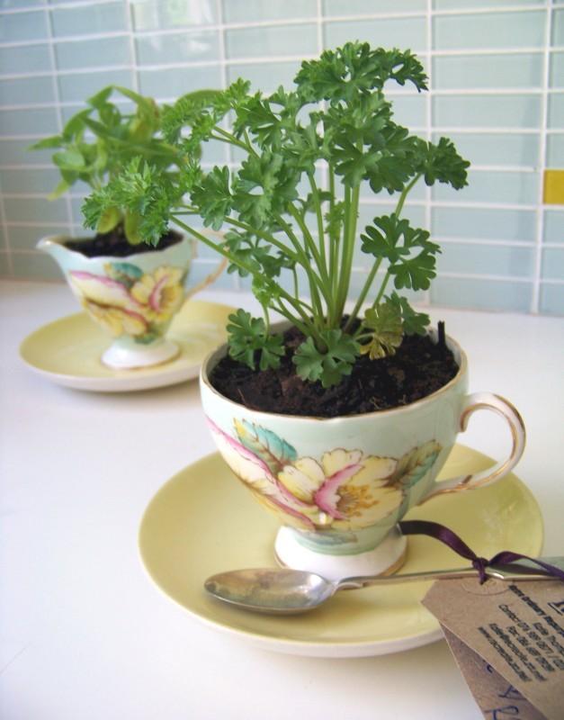 Tazza di thè diventa un vaso