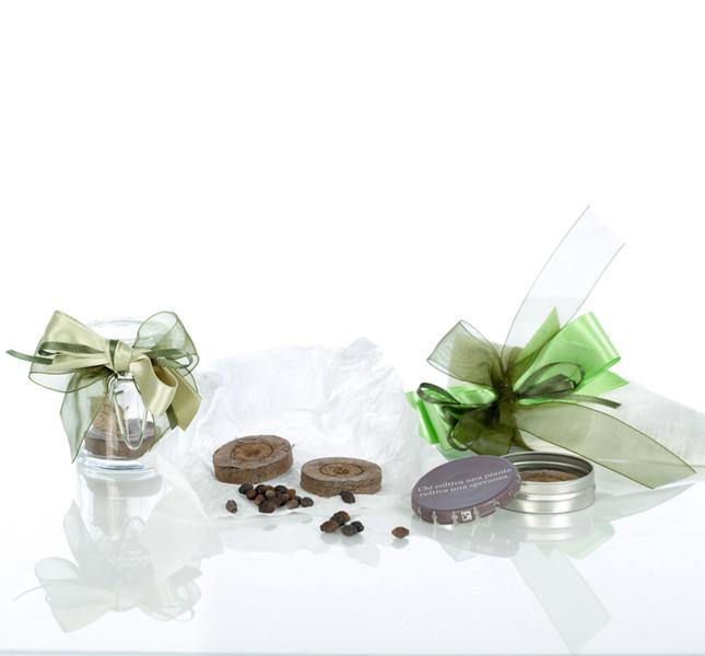Bomboniera con semi da piantare di Voglia di Bonsai