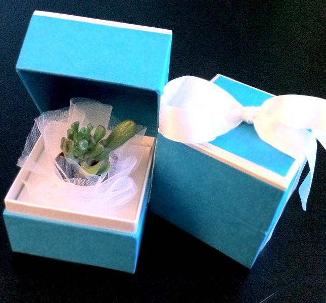 Bomboniera eco chic: scatola artigianale con piantina grassa. Design Sweet White Weddings