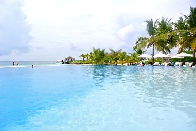 Maldive, alberi di cocco