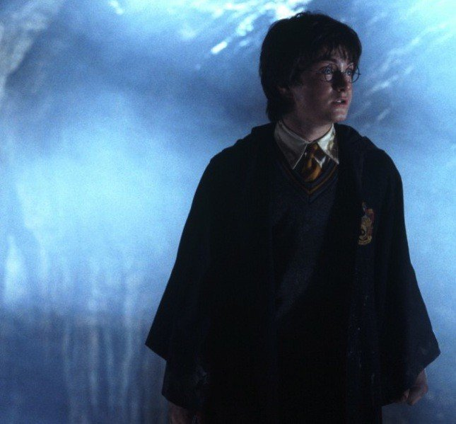 Harry Potter e la camera dei segreti, il secondo film tratto dall'omonimo romanzo della saga