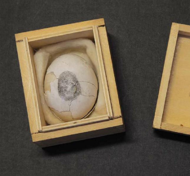 Piero Manzoni - Uovo scultura n. 21, 1960 - uovo in scatola di legno, 5,7x8,2x6,7 cm, Fondazione Piero Manzoni, Milano, Foto Bruno Bani, Milano