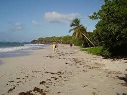 Martinica / wikipedia