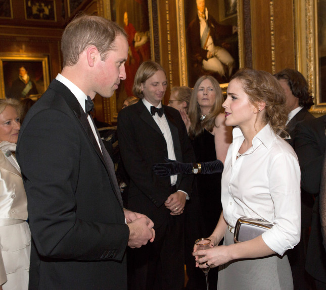 Emma ha partecipato alla cena di beneficenza del Royal Marsden, centro di ricerca sul cancro, alla quale era presente anche il Duca di Cambridge William