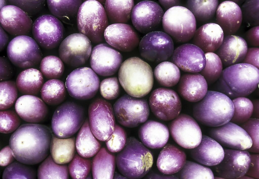 Le melanzane viola aiutano a combattere le malattie circolatorie
