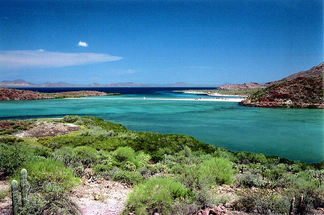 Bahia Concepcion, la baia più bella della bassa California