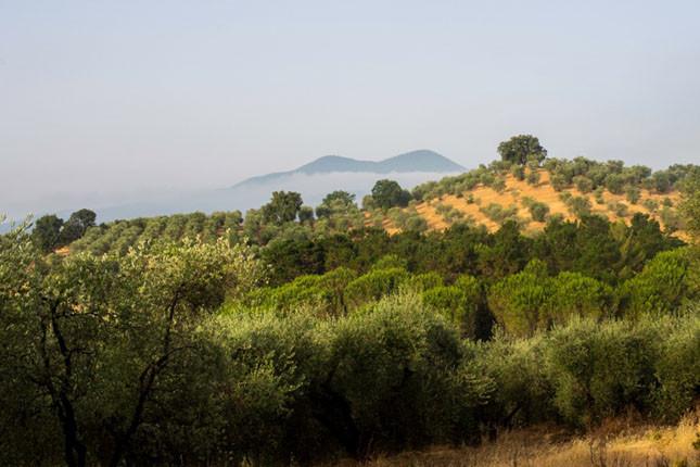 Per sognare fra le il cielo limpido della Toscana scegliete l'Agriturismo Montebelli e Country Hotel