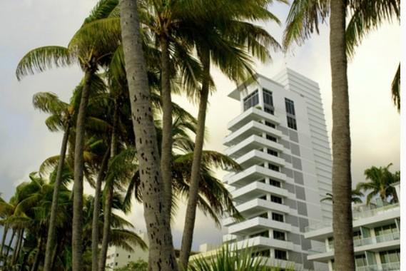 Tra le palme spunta il grattacielo bianco dove si sono tenute le sfilate e i party