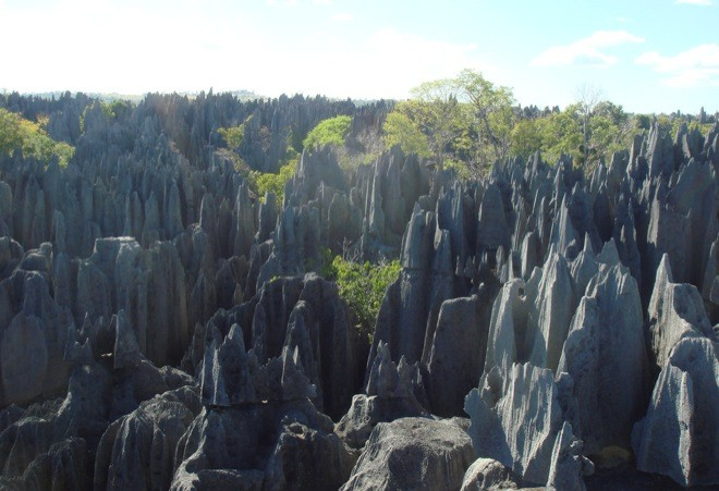 Splendida la riserva naturale integrale Tsingy de Bemaraha - Madagascar