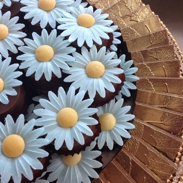 Decori col cioccolato plastico, margherite