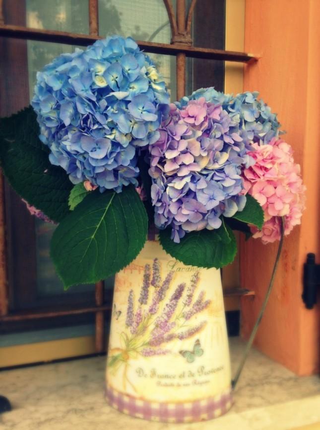 Posiziona la tua ortensia in un bel vaso campestre sul tuo davanzale o sulla tua finestra. Ricorda di scegliere comunque una zona della casa riparata dal sole