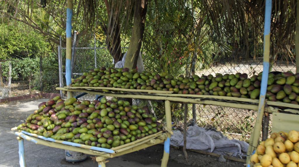 Accanto alla cucina internazionale a Santo Domingo si può assaporare la cucina creola tipica del luogo