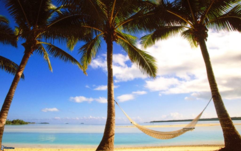 Amaca e palme sulla spiaggia: la vacanza ideale