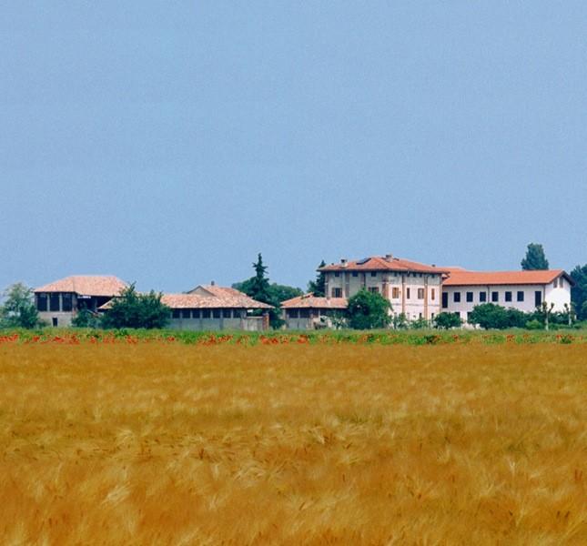 Il monastero ha 40 ettari di campi coltivati