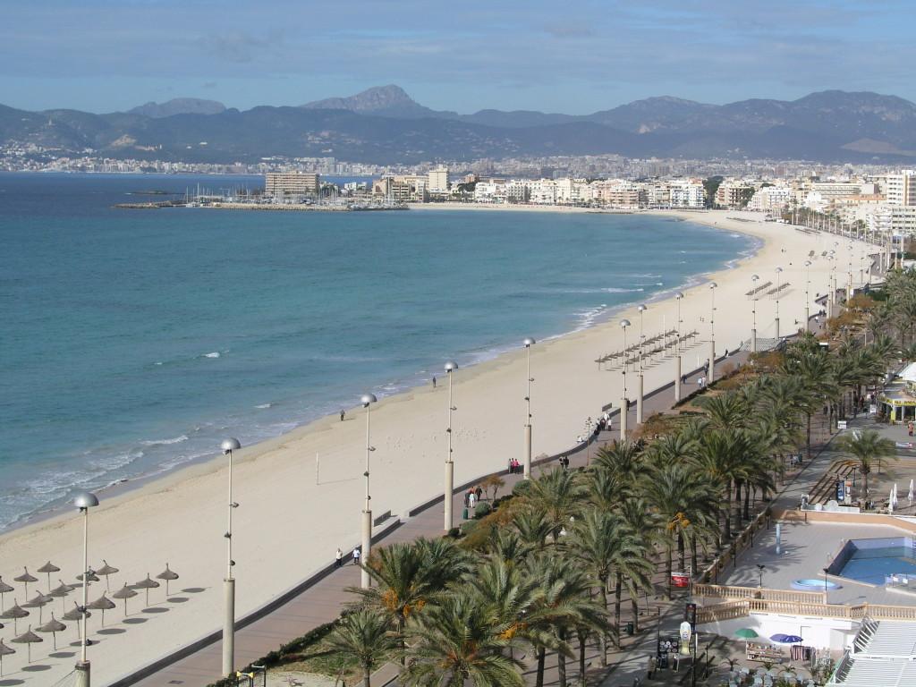 Palme, sabbia finissima e un cocktail in riva al mare: manca qualcosa?
