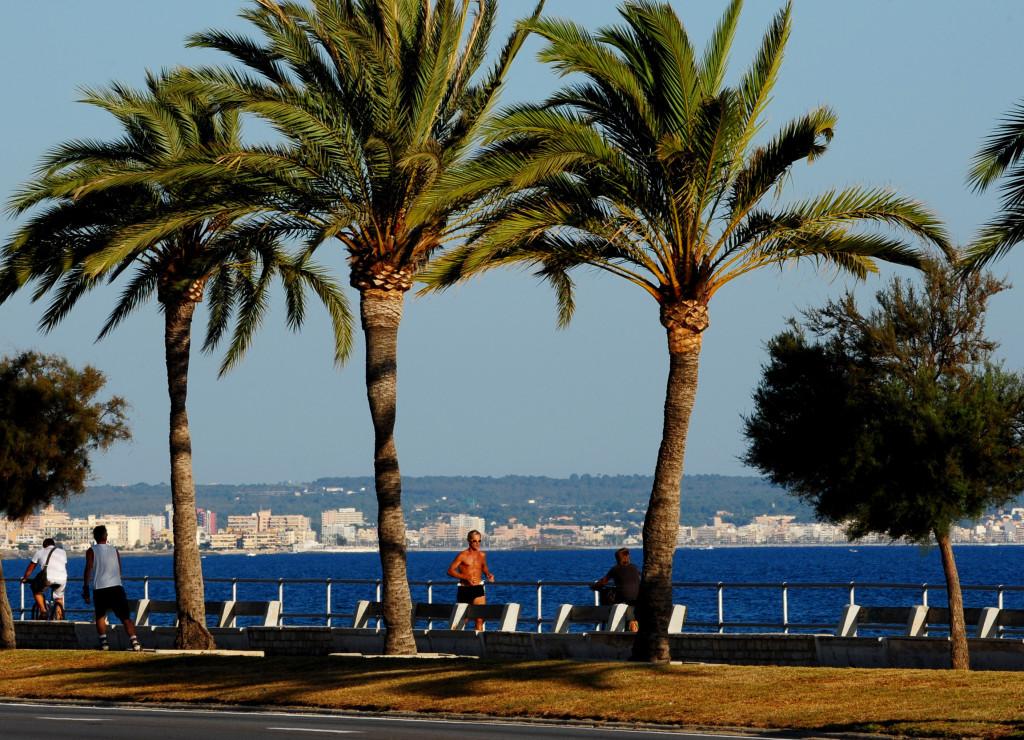 Il fermento cittadino di Palma