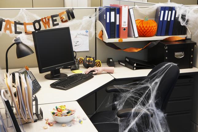 Ragnatele finte e ghirlande di carta, renderanno unico il vostro studio o ufficio