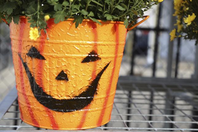 Con del colore arancione, trasformate i vasi delle piante in simpatiche zucche di Halloween