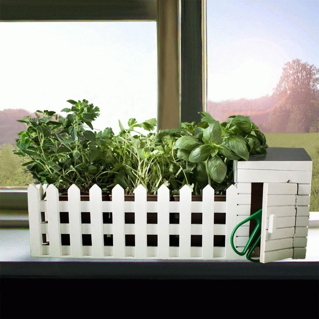 Mini Giardino Da interni Con Semi Assortiti - Troppotogo