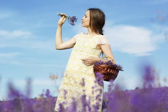 erbe e sostanze naturali no in gravidanza