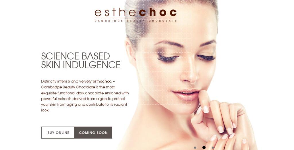 La home page del sito di Estechoc