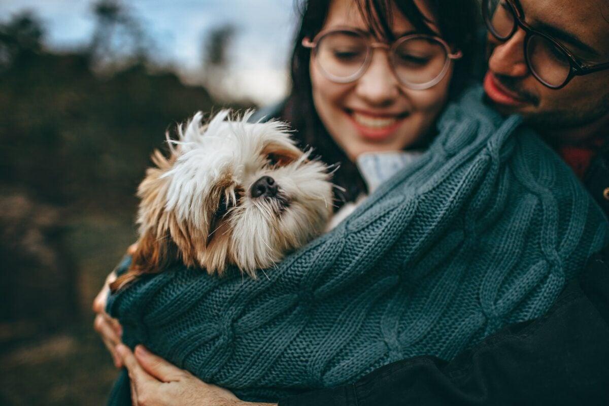 Fra cane e padrone basta uno sguardo