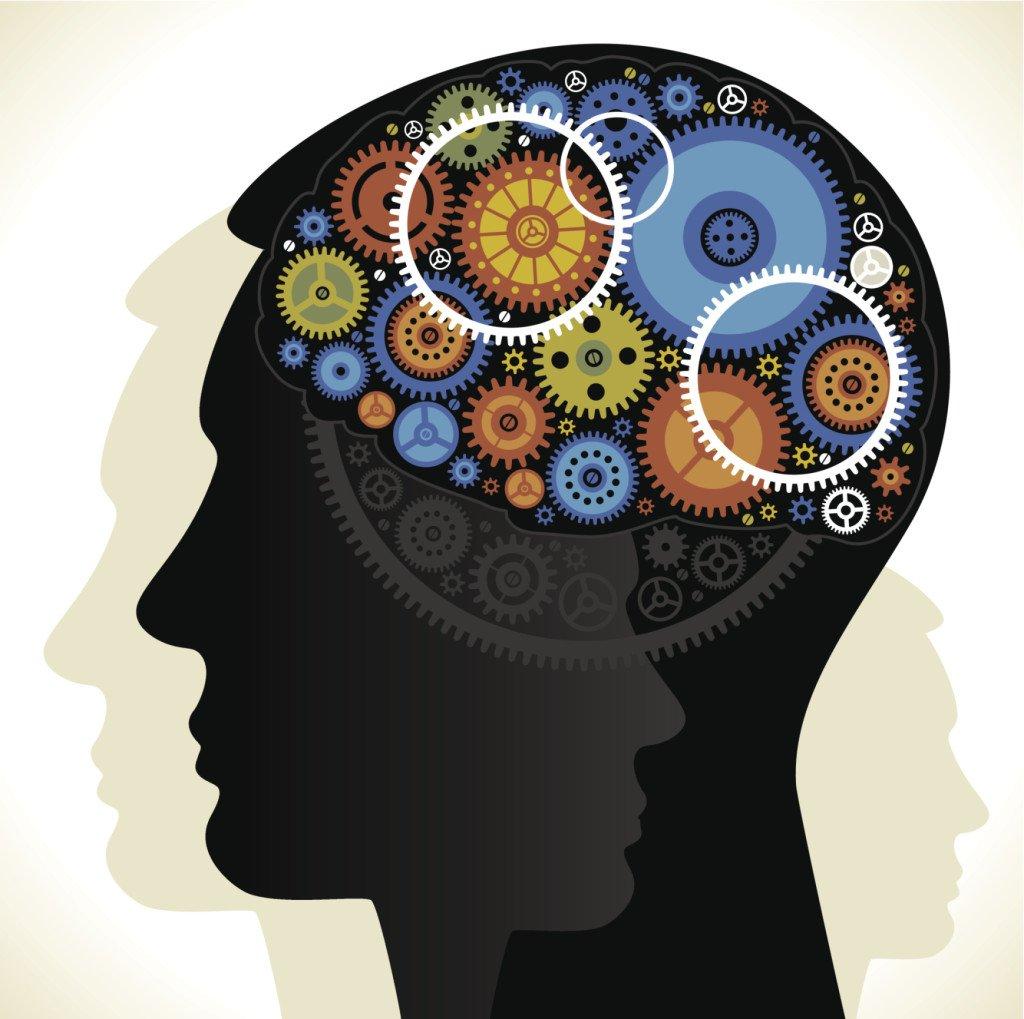 Cervello elaborazione piano B