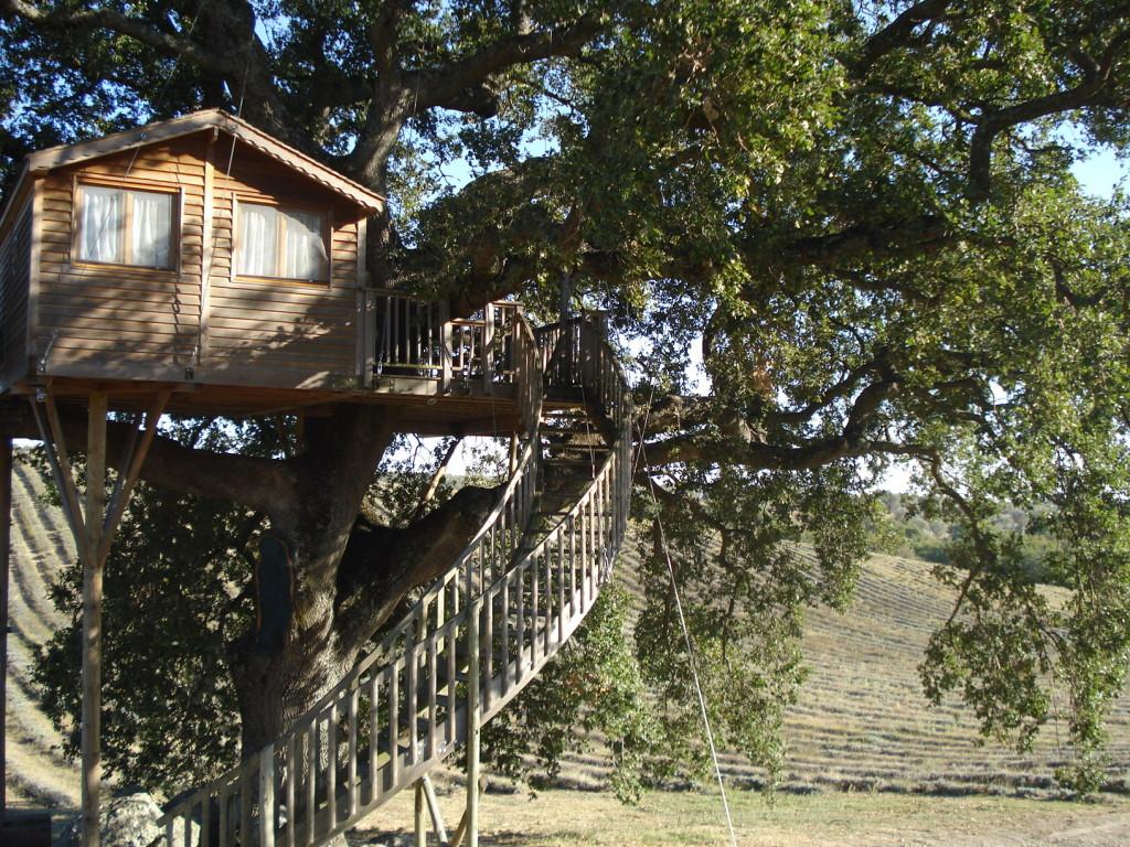 Casa sull'Albero La Piantata