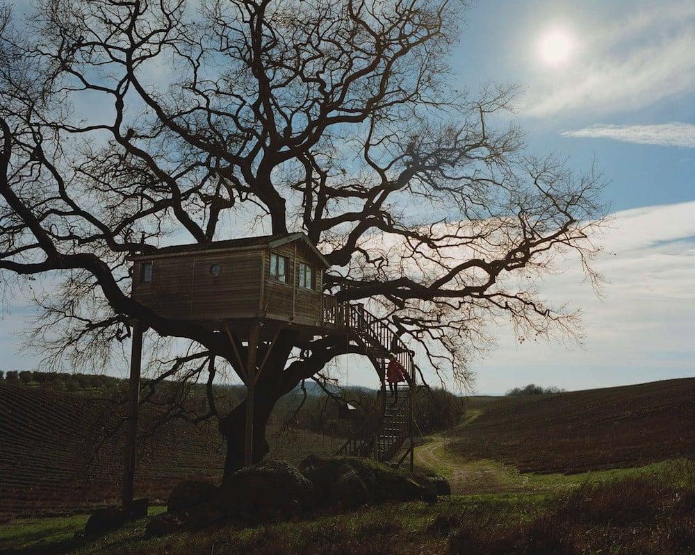 La Casa sull'albero più grande d'europa
