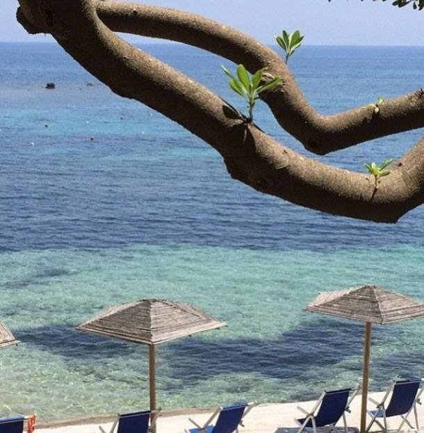 Per 21 giorni vivranno senza potersi vedere o chiamare in compagnia di 24 single all'interno di un lussuoso relais nel sud della Sardegna