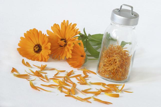 La Calendula Officinalis è un rimedio naturale utilizzato sia grazie alle sue proprietà cosmetiche sia grazie alle sue proprietà curative.