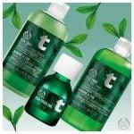Linea Tea Tree per pelle grassa e impura di The Body Shop
