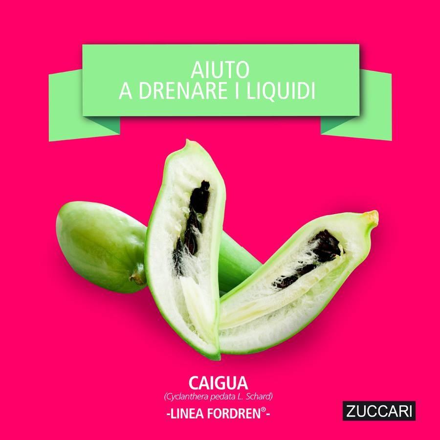 Caratteristica della Caigua, ingrediente presente nella linea Fordren di Zuccari: favorisce il metabolismo dei carboidrati, del colesterolo e aiuta a drenare i liquidi.