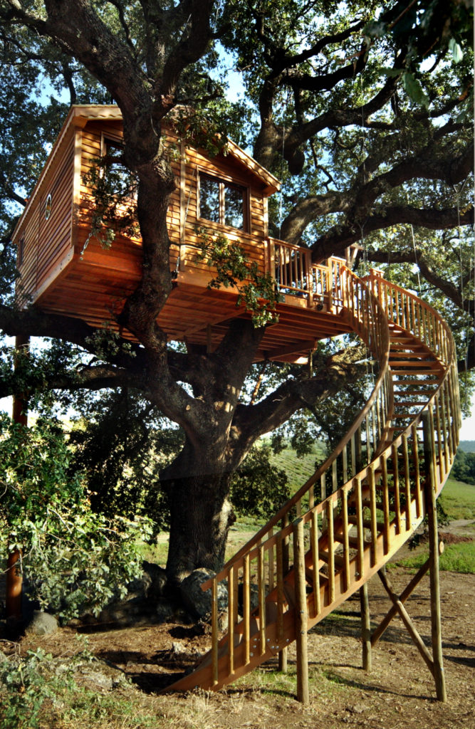 casa sull'albero La Piantaia Viterbo