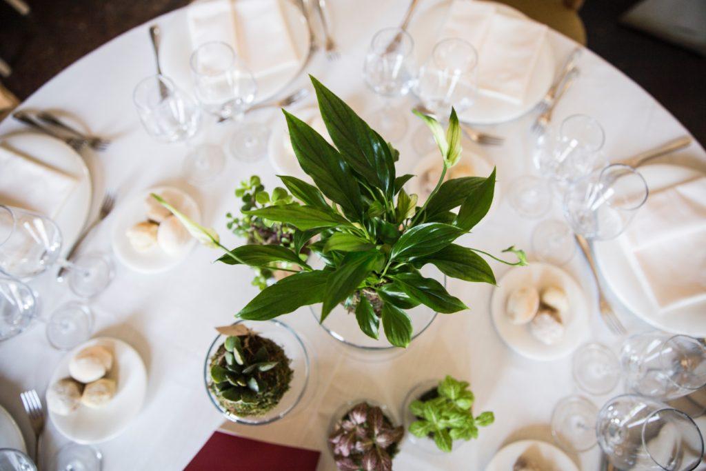 5 Kokedama diventano un meraviglioso centrotavola realizzato da Fiori Chiari per Amiche della Sposa Wedding Planner.