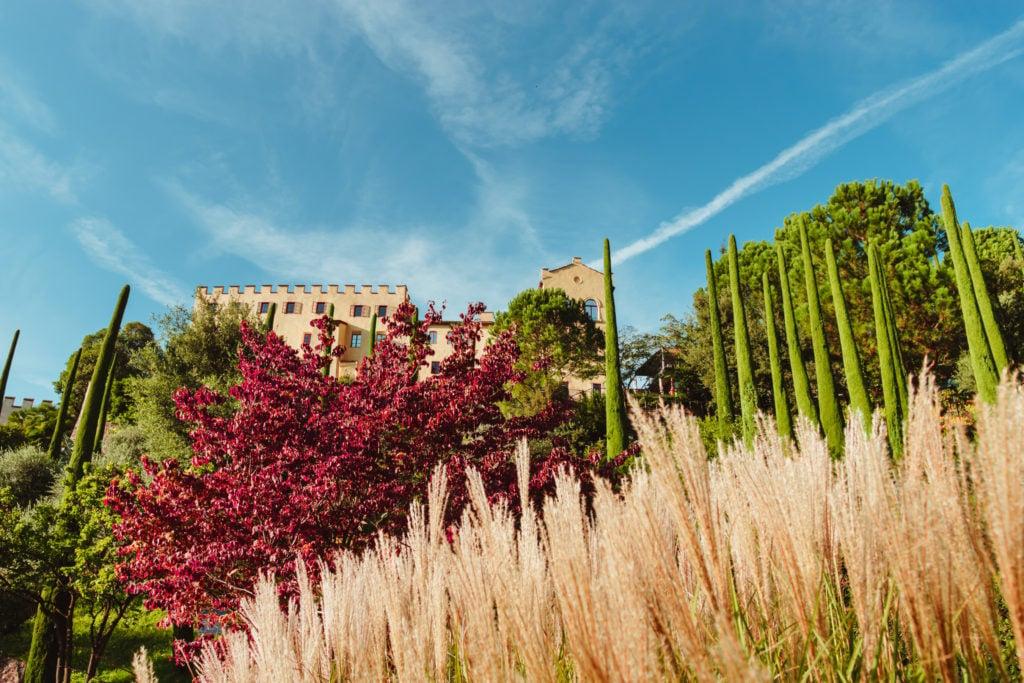 Riso ai Giardini di Sissi 2