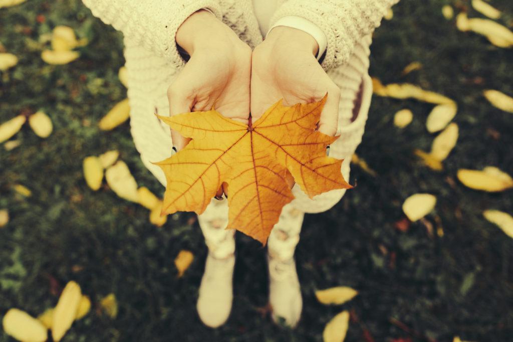 Frasi autunno
