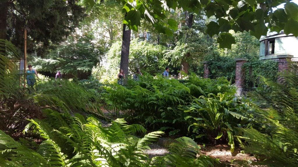Orto botanico di brera a milano unadonna