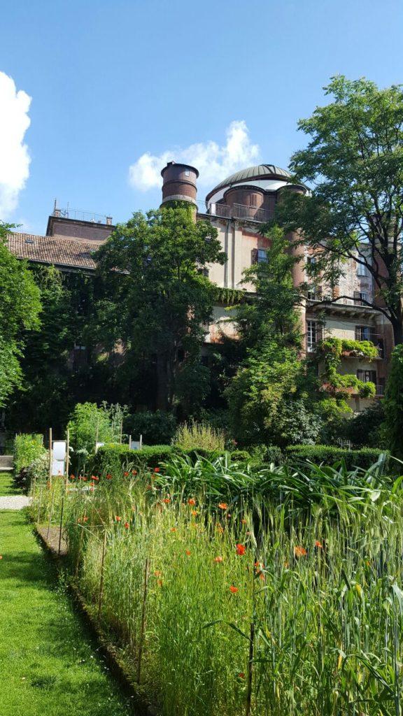 Orto botanico di Brera a Milano