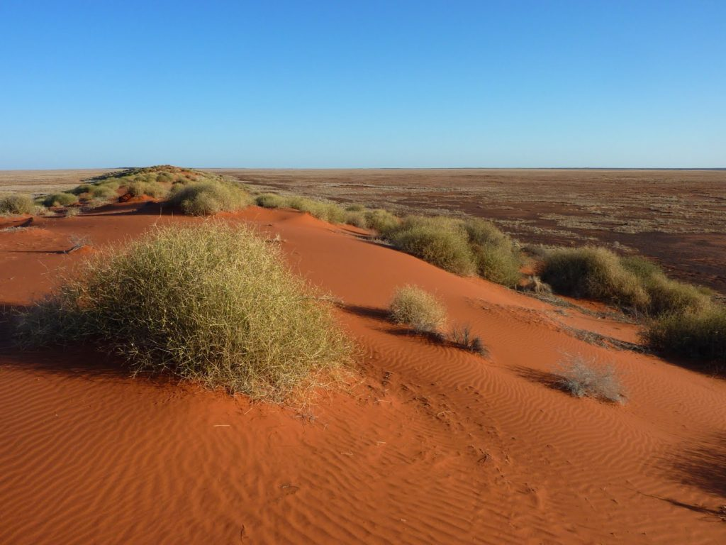 Simpson Desert, Queensland, Australia.