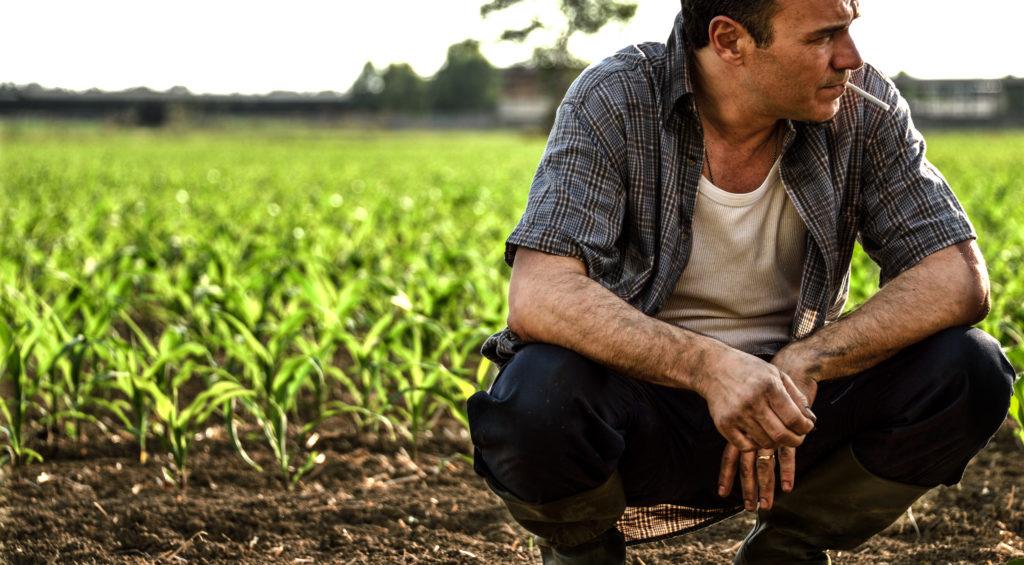 Massimiliano Gallo è il contadino Cosimo in Veleno
